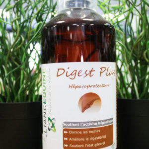 Digest plus 1L Alliance Equine