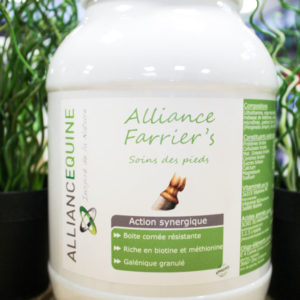 Alliance Farrier's Alliance Equine