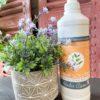 SHINE SOLUTION – Spray démélant ALODIS CARE