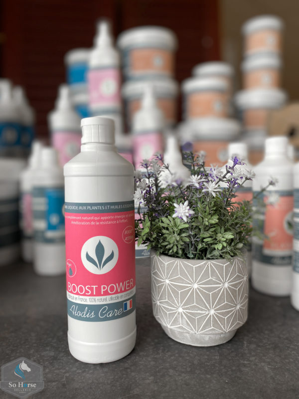 Boost Power - Alodis Care