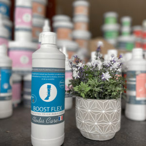 Boost Flex - Alodis Care